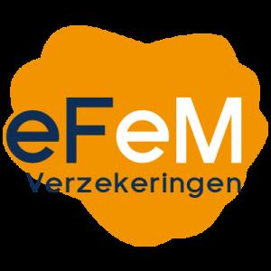 eFeM Verzekeringen